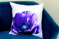 Picture of Cushion